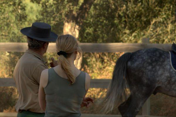 Silver_Coast_horses3