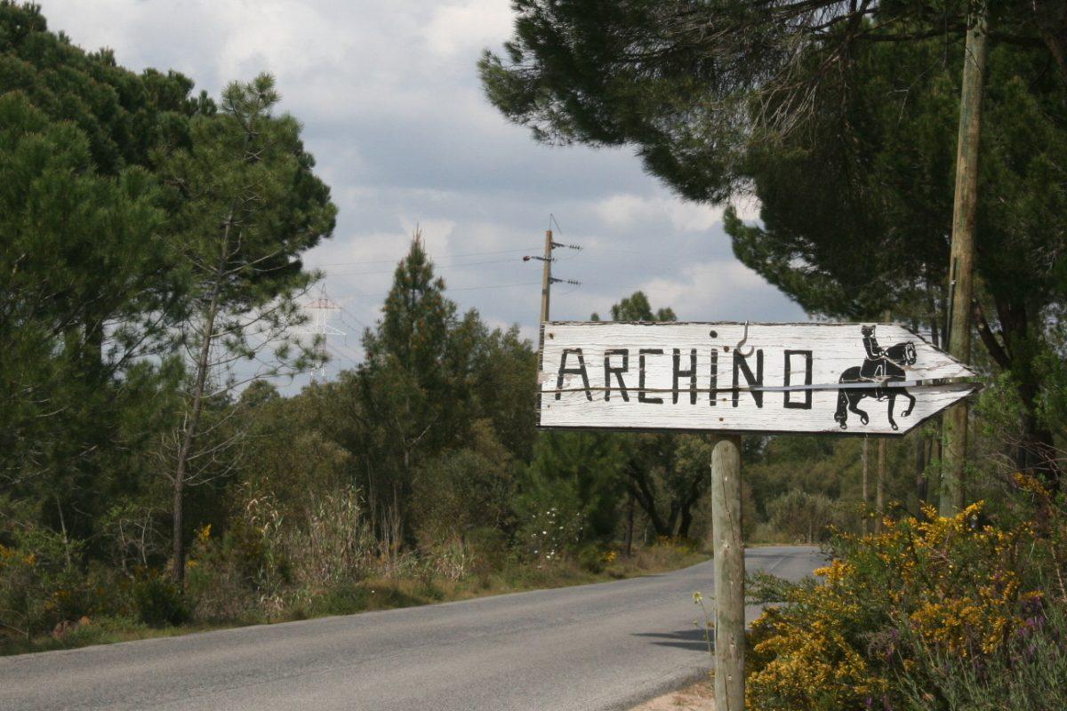 Quintadoarcino_thefarm