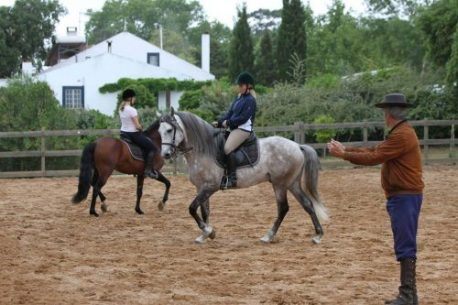 Classical Riding Lessons – Quinta do Archino