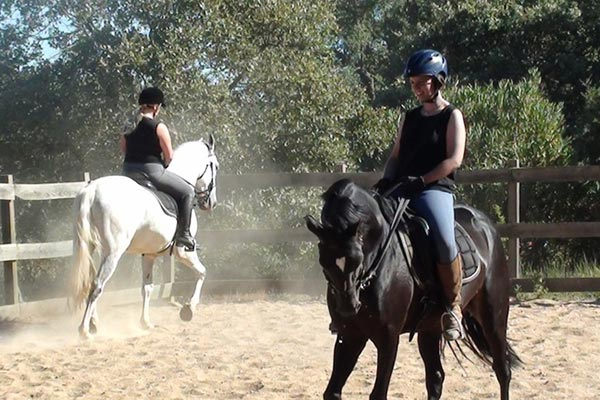 Classical Riding Lessons