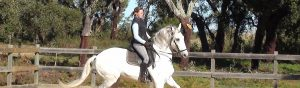 Equestrian Services at Quinta do Archino